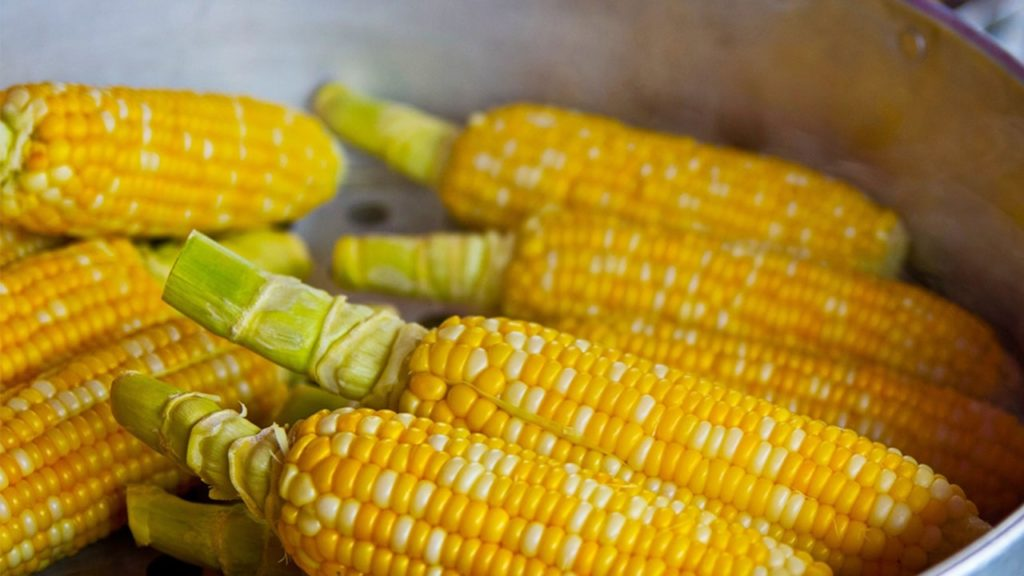 cornflour in hindi
